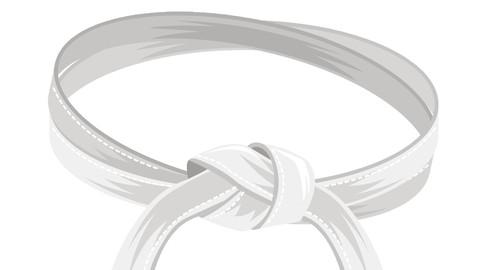 IASSC CSSC : Lean Six Sigma White Belt Certification Exams