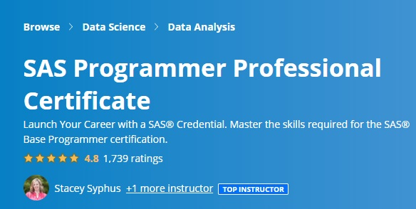 SAS Programmer Professional Certificate