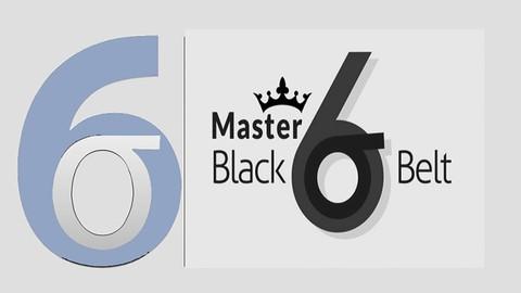 Lean Six Sigma Master Black Belt certification Test 2021