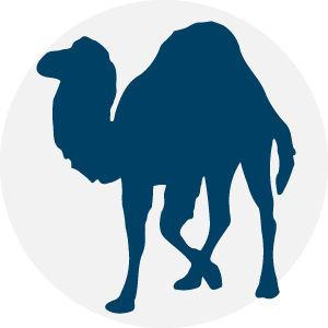 Perl Courses