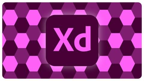 Adobe Xd desde las bases