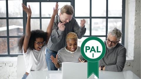 PAL I Professional Agile Leadership Certification Practice