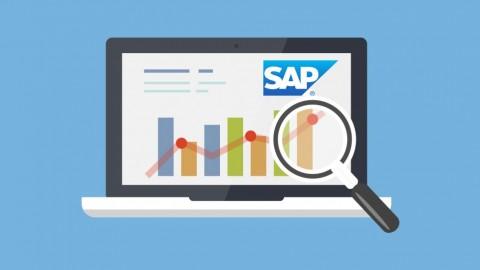 Learn SAP BEx Analyzer – Training Course