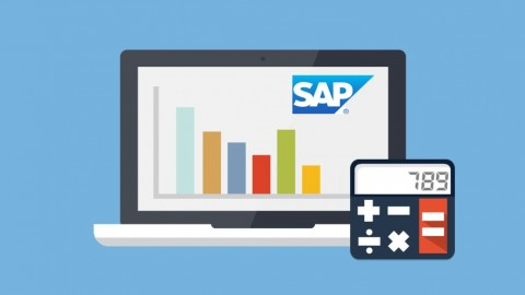 Learn SAP Financial Accounting – Online Training