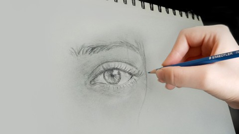 Ultimate & Complete Drawing course : Beginner to Advanced!