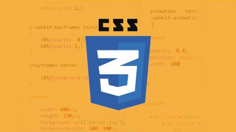 Learn CSS Transition and Animation